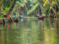 7 Days All Kerala Tour