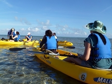 Key Biscayne FL - Visitors On Kayaks