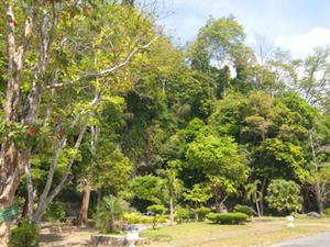 Para Khao Wang Parque Phaya