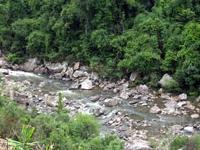 Khe Floresta Ro Primitive