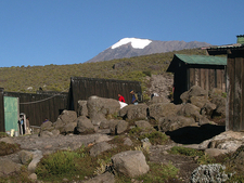 Kibo Peak In The Backdrop - Kilimanjaro