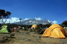 Kilimanjaro Shira Route - Tanzania - Africa