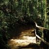Kinabalu Park - Heritage Site