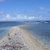 Dry Strip Of Land On Kingman Reef
