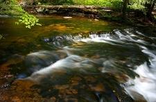 Kitchen Creek In The Glen Leigh Valley, A Part Ricketts Glen State Park