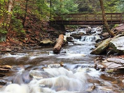 Kitchen Creek - Ricketts Glen State Park - PA