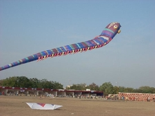 View Of Kite Festival