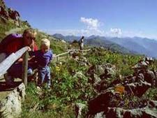 Kitzbühel Alpine Flower Garden. Tyrol Austria