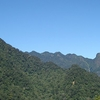 Knuckles Mountain Range