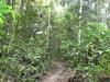 Koaunui Hut Via