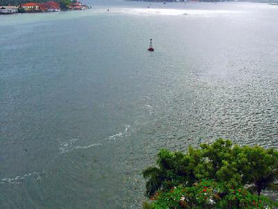 Kochi View From Taj Malabar