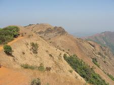 Kodachadri Karnataka India