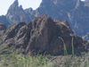 (Kofa Mountains