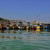 Koggala Fishing Boats