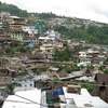 Kohima City View