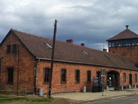 Super Saver Tour Auschwitz, Birkenau and Salt Mine