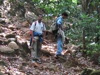 Kudremukh National Park Trekking