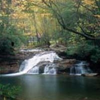 Kumbrabow Forestal del Estado