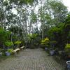 Kundasang War Memorial - Area