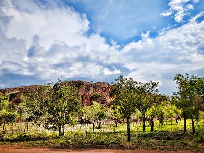 Kununura Landscape