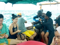 Kwale Island Day Tour