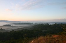Kakamega Rainforest Sunrise