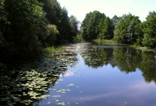Kammer Canal