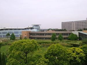 Kanda Universidad de Estudios Internacionales