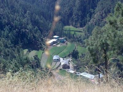 Karog Near Glen Shimla