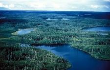 Kenai Refuge Lowland Lakes