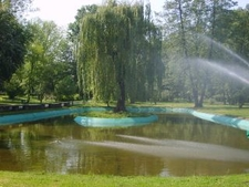 Pond With Fountain In Park Krakowski