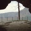 View Through Kuhstall