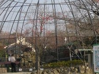 Kyoto Municipal Zoo