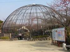 Aviary At The Kyoto Municipal Zoo