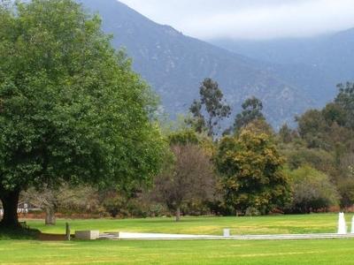 L A  County  Arboretum    Fountain