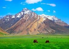 Ladakh Suru Valley - J&K India