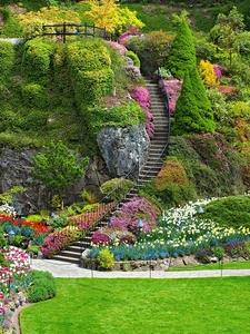 Ladder In Sunken Garden - Butchart Gardens - Victoria BC