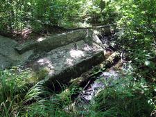 Lady Bug Trail