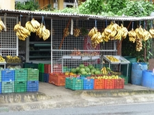 La Fortuna Fruit Shop