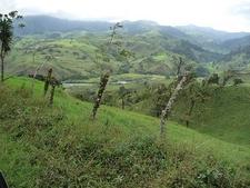 La Fortuna Landscape