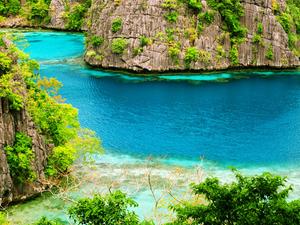 Filipinas - Corais, penhascos e cavernas 9 Dias