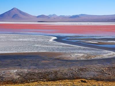 Laguna Colorada - Potosi