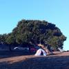Laguna Seca Recreation Area