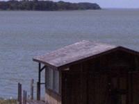 Lake Apopka
