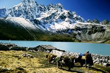 Lake At Gokyo Nepal