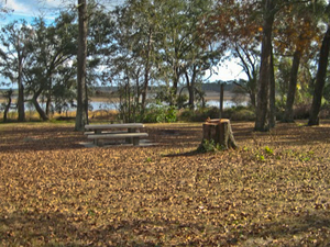Lake Delancy East Campground