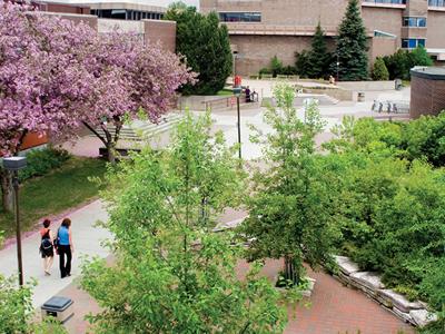 Lakehead  University  Summer  Campus