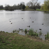 Lake In Foots Cray Meadows