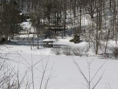Lake  Laurel In Winter