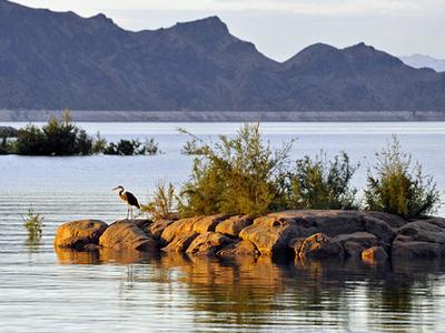 Lake Mead Outcrops